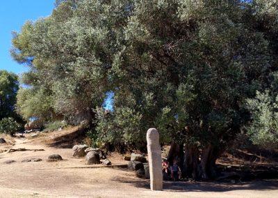 stonehenge_kors_2017_05